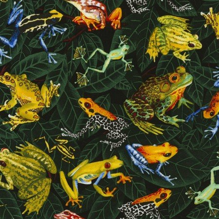 Brightly colored tropical frogs on green