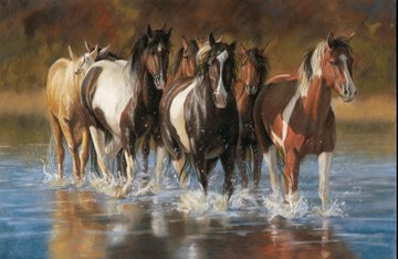 Unbridled - horses and water scene