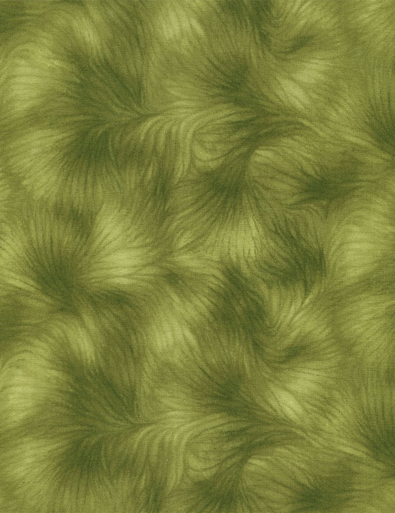Viola - green feathery texture