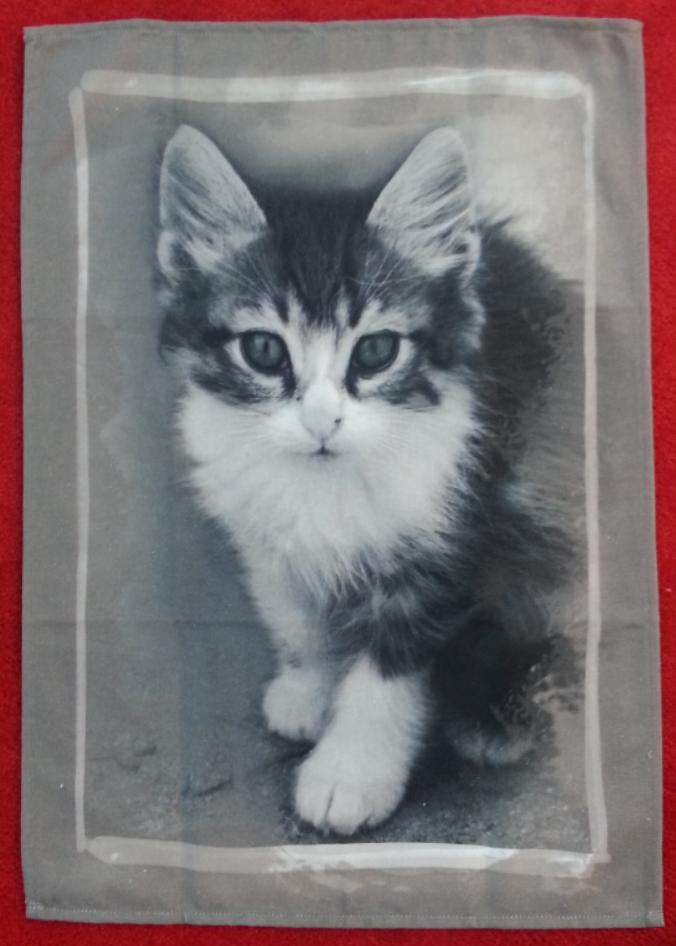 STOF Fluffy Cat tea towel