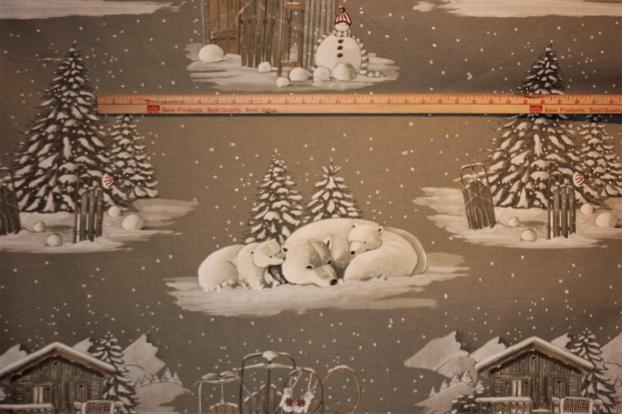 French Winter Wonderland #001