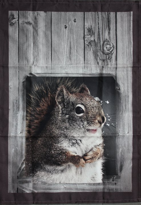 STOF Squirrel tea towel