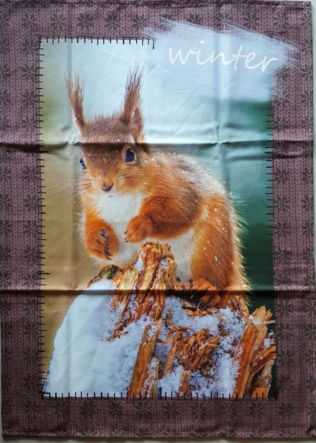 STOF Winter squirrel tea towel
