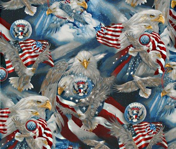 12484 202 Americana'