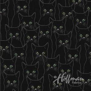 P4347 213 Full Moon Cats