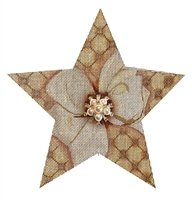 LANI/110E Gold Bling Star