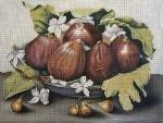 MSD/2103 Figs