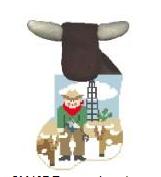 KSD/CM407 Texas Cowboy w/Longhorn