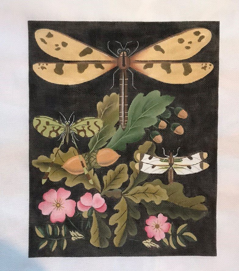MSD/2151B Dragonflies & Acorns