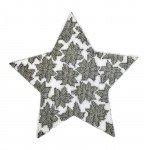 Wg11765 Poinsettia Star - silver