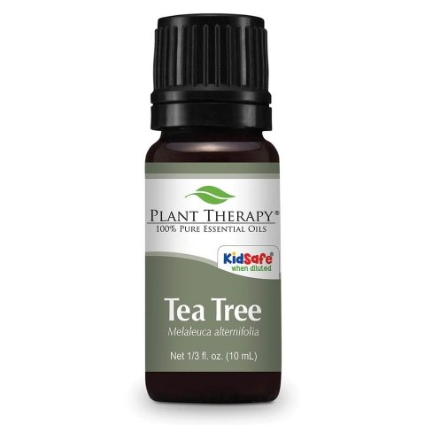 PT Tea Tree Essential Oil 10ML