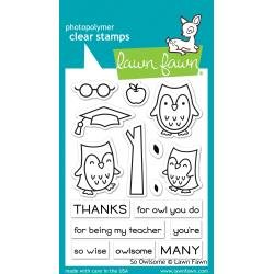 Lawn Fawn Clear Stamps 3X4 So Owlsome