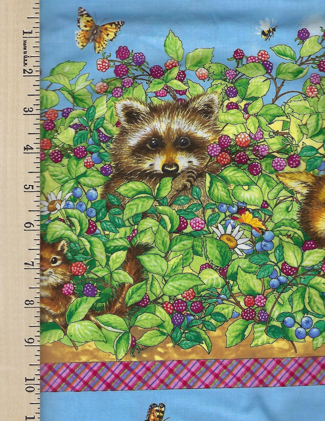 Beary Berry Patch  border print SSI
