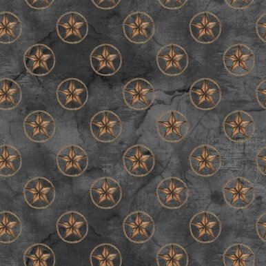 Blank Quilting  Corp Home On The Range 9260-99 Stars on Black