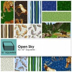 Clothworks Open Sky CLTTSQ0177 10 In. squares