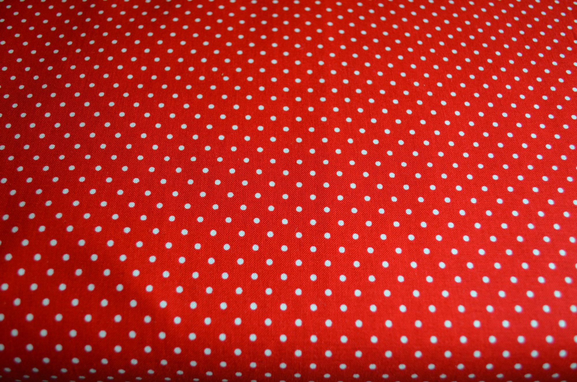 Riley Blake White Swiss Dot On Red C670-80