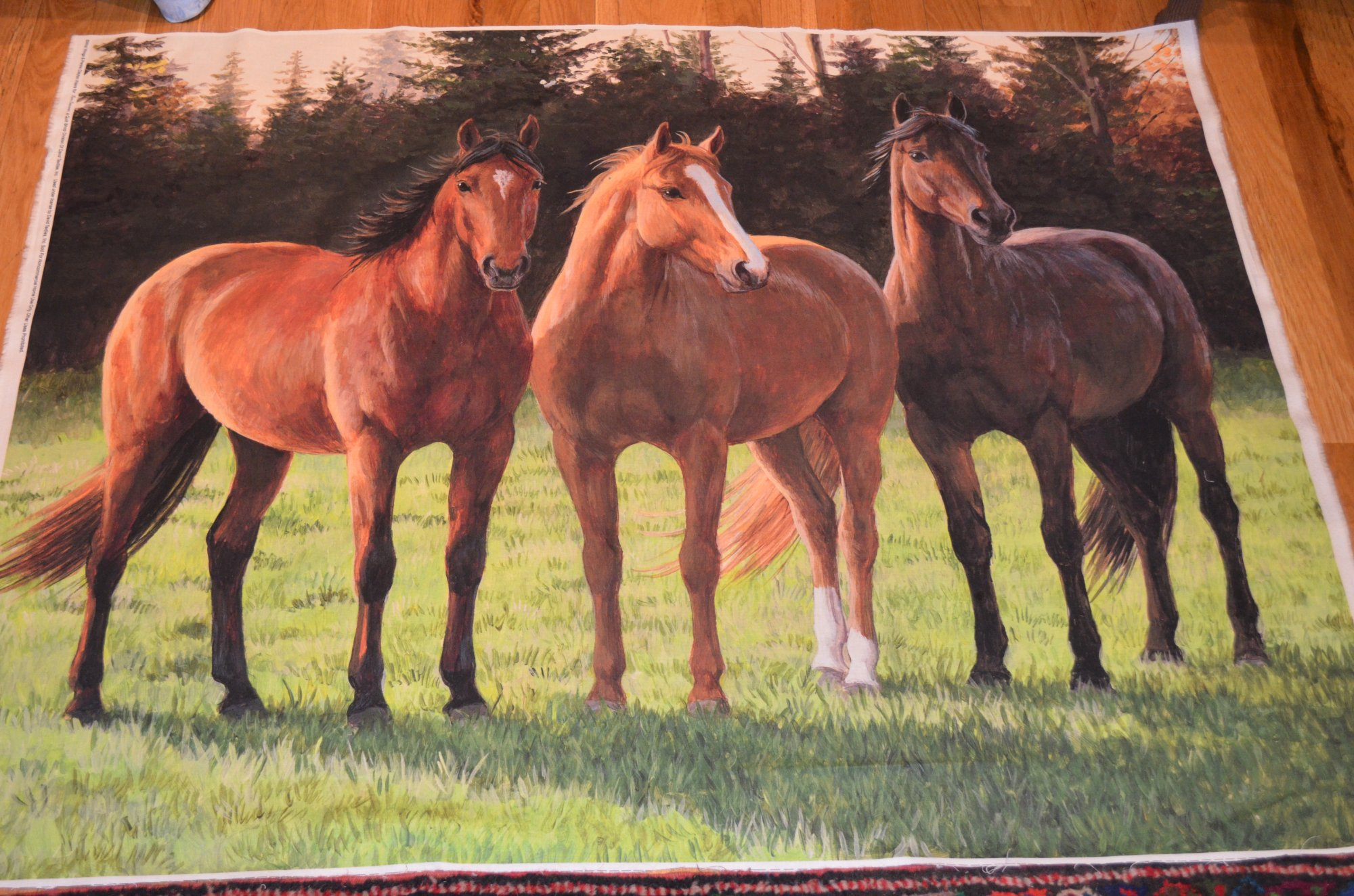 A Sunny Day WW-3017-7C Three Horses in Pasture 36 Panel By Wild Wings