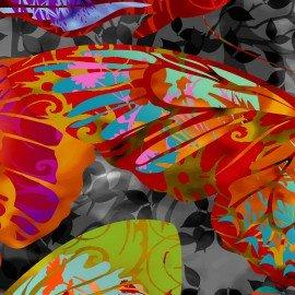 In The Beginning Dreamscapes II IBFDRT1JYH-1 Orange Butterflies on gray