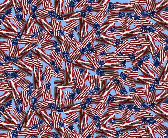 Paws of Valor-Sky-USA Flags