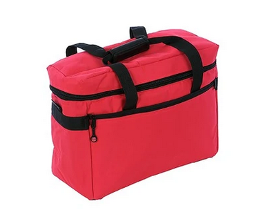 Project Bag - Red