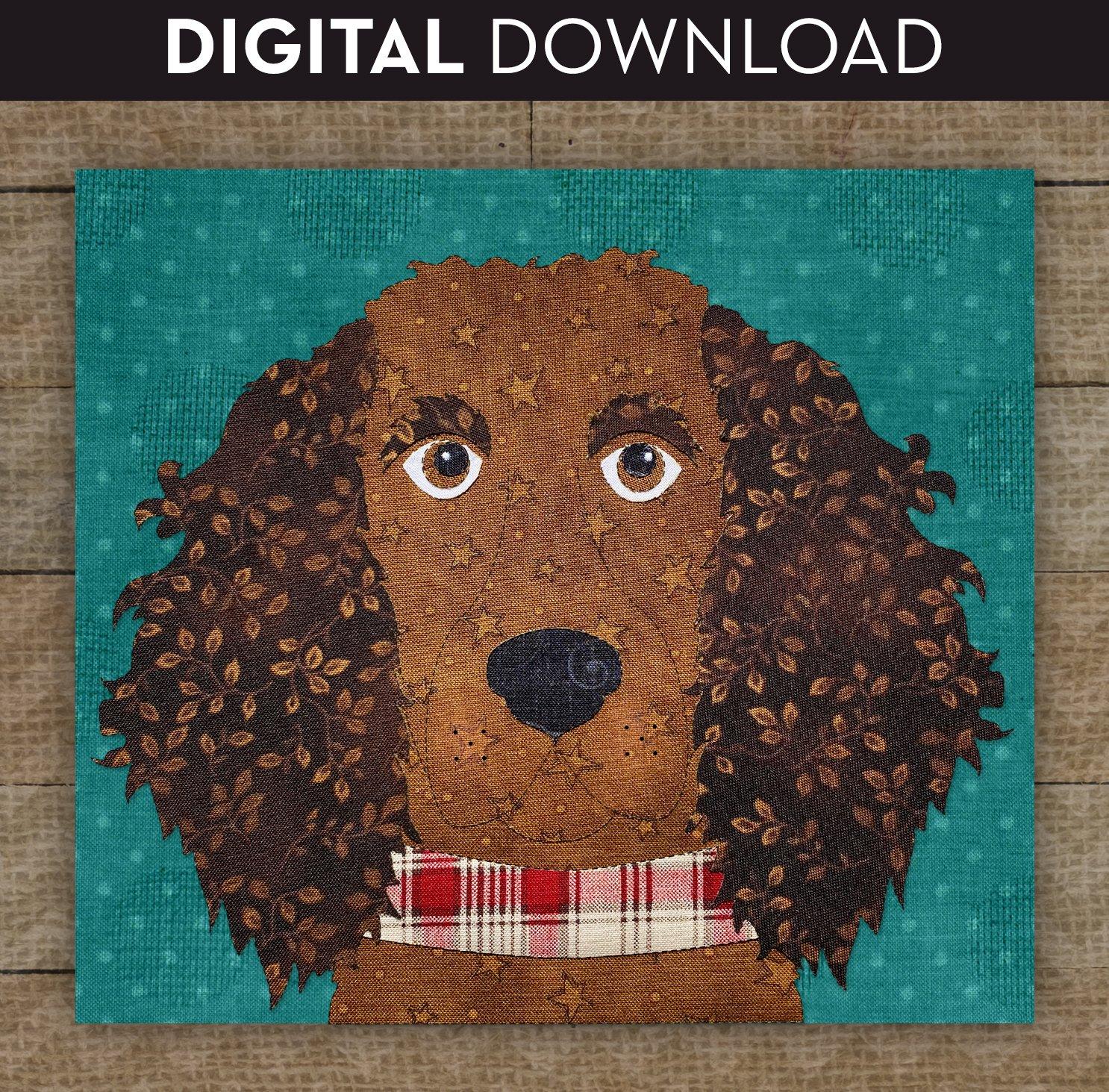 American Water Spaniel/Boykin Spaniel - Download