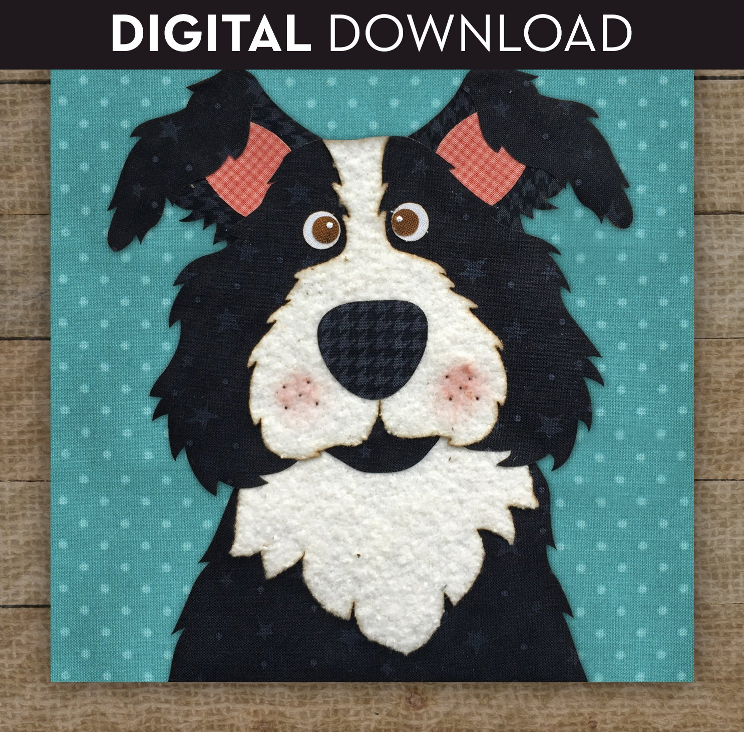 Border Collie - Download