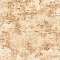 Backcountry by Quilting Treasures 26736-A