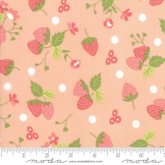Strawberry Jam by Moda Fabrics 29062-22