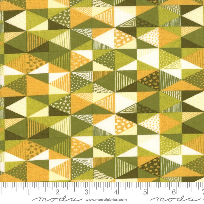 Nova by Basic Grey for Moda Fabrics 30581-11