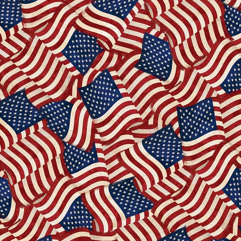 America My Home by Wilmington Prints 82595-341