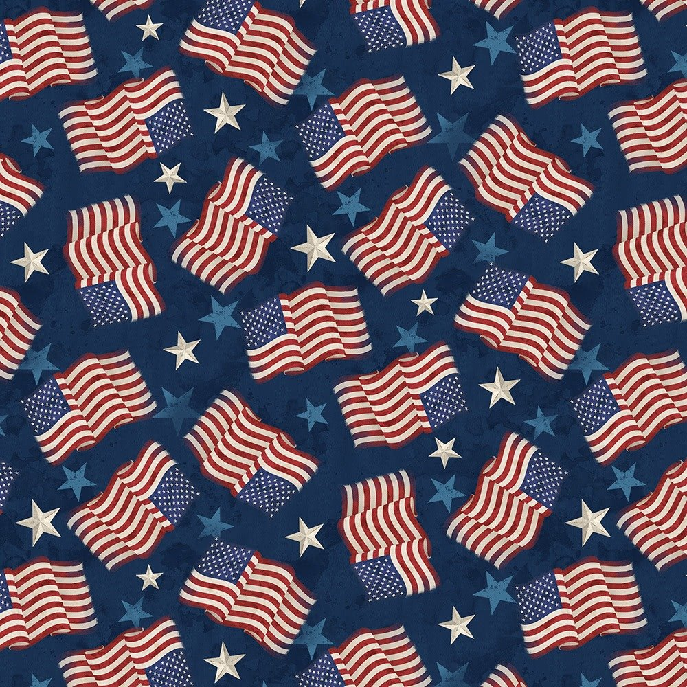 America My Home by Wilmington Prints 82596-434