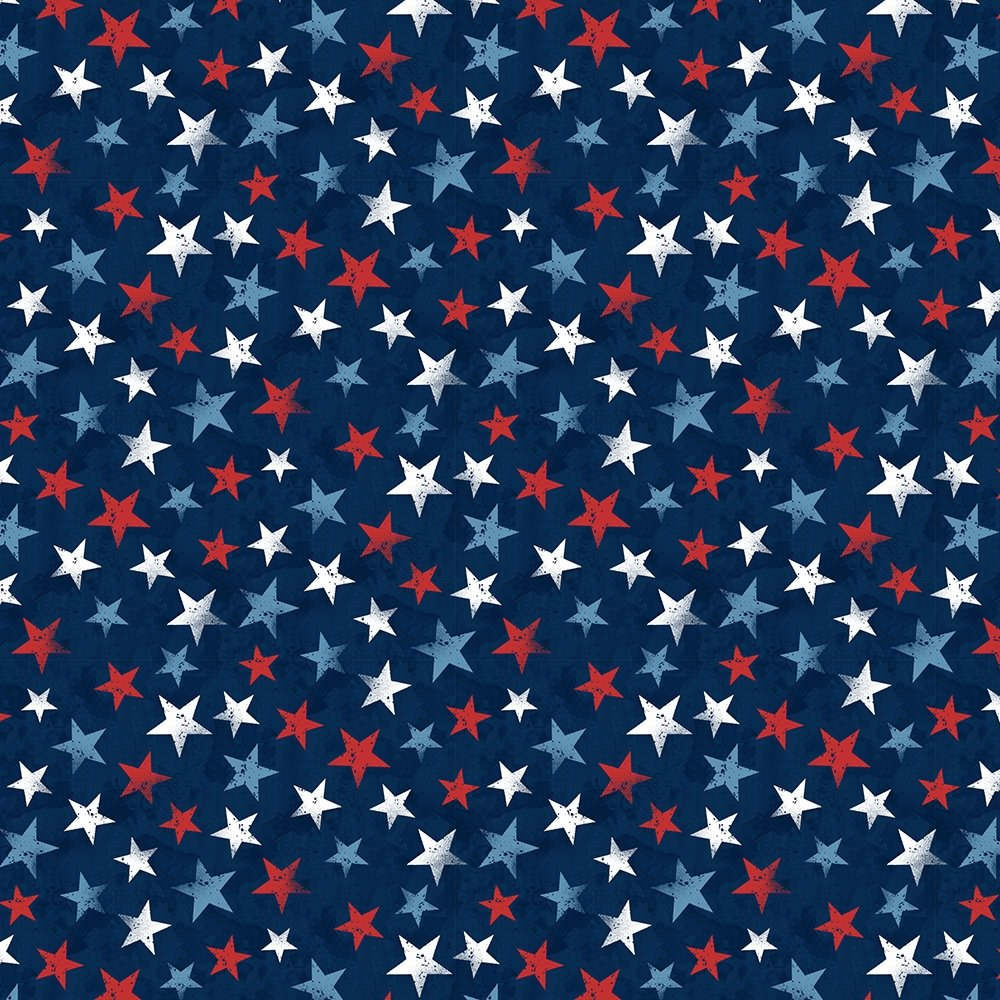 America My Home by Wilmington Prints 82598-431