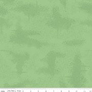 Shabby by Riley Blake Designs C605 GREEN