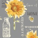 Bee My Sunshine by Whistler Studios for Windham Fabrics 43314-1