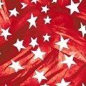Lady Liberty by Windham Fabrics 51135-2