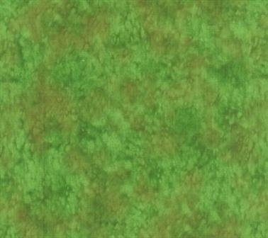 Blank Splash Lichen