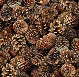 Elizabeth Studio Landscape Medley pinecones