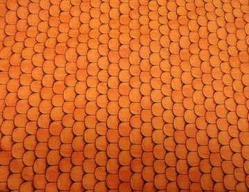 Quilting Treasures Hairraising Halloween orange/brown (1A)