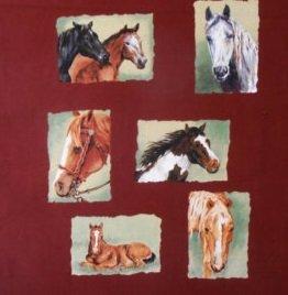 Troy Horsin' Around double panel horses