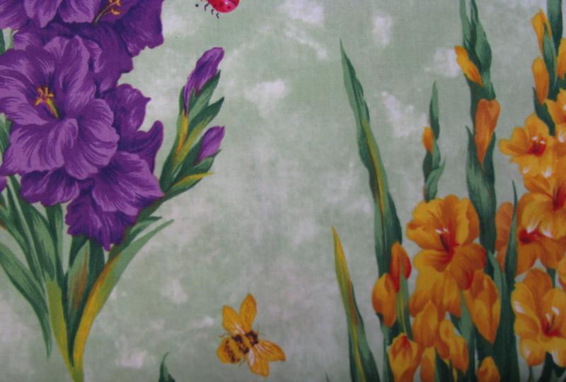 Gladiolus large print