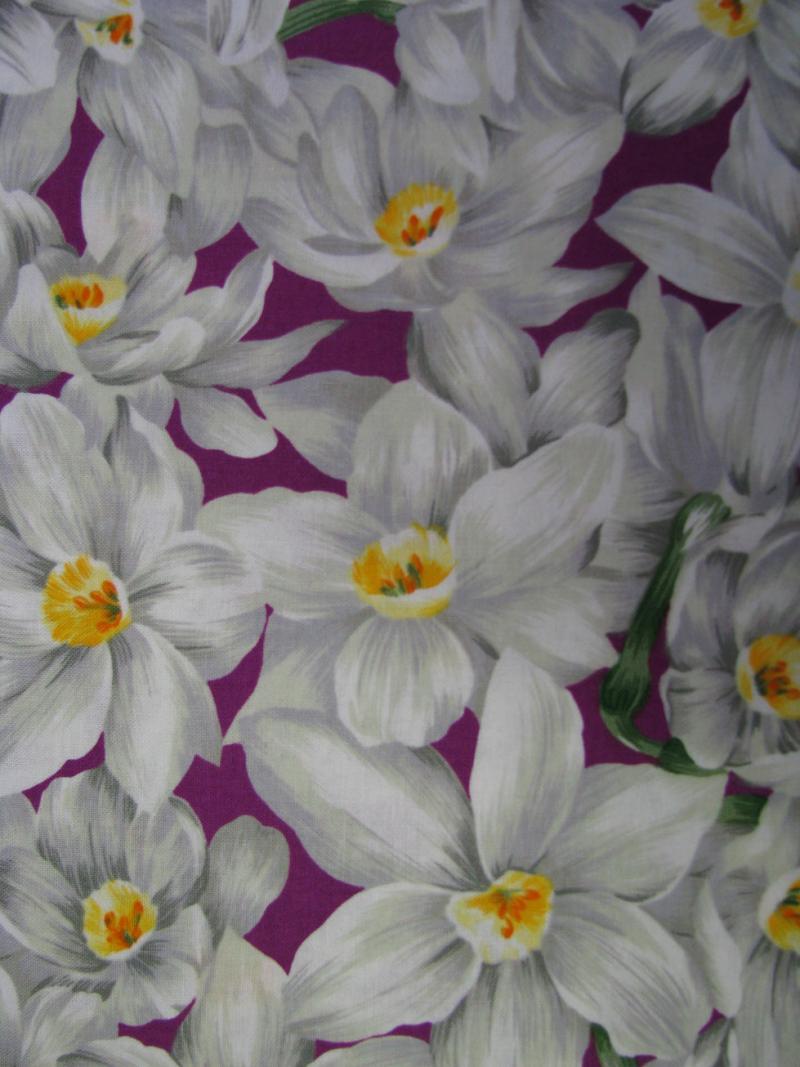 Narcissus on purple