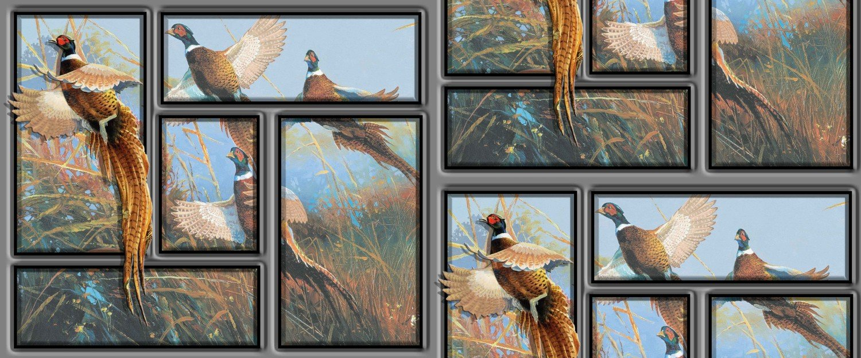 Wild Wings Pheasants Forever Flying High
