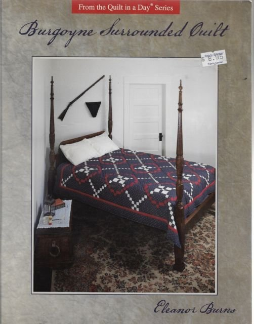 Burgoyne Surrounded Quilt from Quilt in a Day by Eleanor Burns