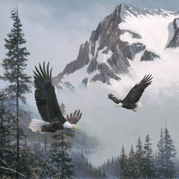 WHEN EAGLES SOAR 44 x 44 Panel BLUE GRAY MULTI