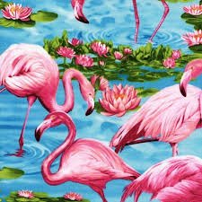 Timeless Treasures Pink Flamingos Turquoise Blue Fabric 44/45 100% Cotton