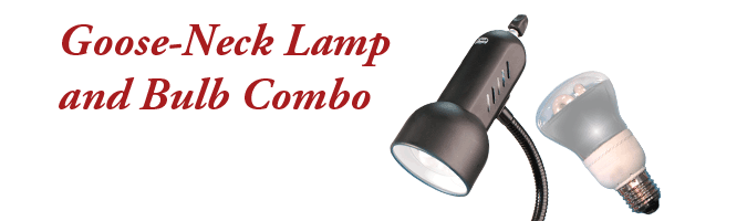 Light The Goose-Neck Lamp and Bulb