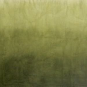 Fabric Cotton Marcus Brothers Green - Ombre Hand Dyes - Sage Green