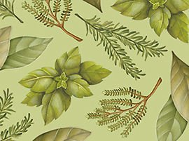 Quilting Treasures Just a Pinch by Angela Anderson Tossed Herbs