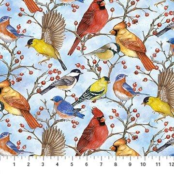 Bird Song, birds by Northcott