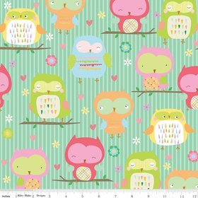 Owl & Co by Riley Blake C4940 teal